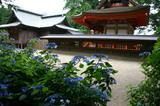 あじさい水戸八幡神社