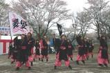 桜川の桜まつり嫂舞会