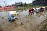 笠間稲荷神社御田植祭09-05-10(13)早乙女