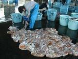 久慈漁港07-05-08