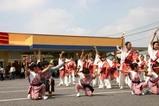 水海道千姫まつり09-04-12(9)よさこい