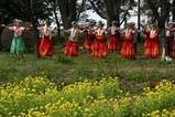 古河桃まつりフラダンス練習