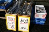 那珂湊(8)那珂湊おさかな市場(0)地鮭