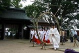 若宮八幡宮夏越の大祓式09-06-28(2)神事茅の輪くぐり