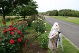 花10-06-09辰口しんすい庵のバラ