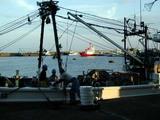 久慈漁港底引き