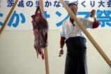 ひたちなかサンマ祭り08-10-19(8)アンコウの吊切り66