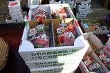 幸の実雪まつり09-02-07(3)野菜