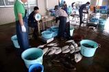那珂湊漁市場
