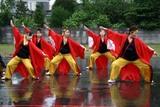 常陸国YOSAKOI祭り10-5-23(6)夢翔華