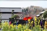 大山寺10-04-18和尚行列