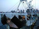 久慈漁港070222b