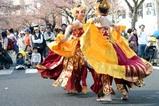 日立さくらまつり09-04-05(72)バリ舞踊チェンドワラシー