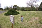 那珂茨城県植物園チュウリップ1
