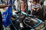 那珂湊かつお祭09-07-05(4)水産物販売