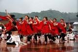 常陸国YOSAKOI祭り10-5-23水戸藩YOSAKOI連