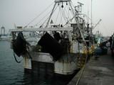 久慈漁港061020底引船