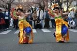 日立さくらまつり バリ舞踊スカルクンギ歓迎の踊り