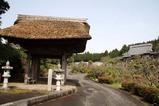 鳳台院のシャクナゲ