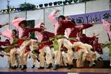 常陸国YOSAKOI祭り09-05-17(21)桜家一門YOSAKOI隊