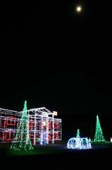 クリスマスイルミネイション亀作縦