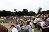 ひたちなかフラフェスティバル09-07-05仕分け(2)カレイオプアメリア