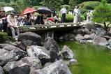 西山の里花菖蒲まつり09-06-14(2)津軽三味線