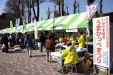 いばらき県北うまかっぺまつり08-03-08