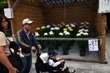 笠間稲荷菊人形展