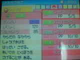 26a48ebc.jpg