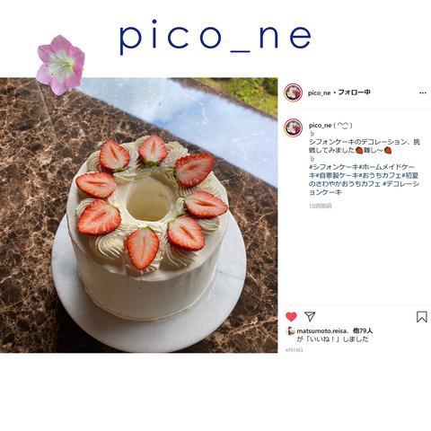 pico_ne-3