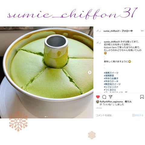 sumie_chiffon31-23