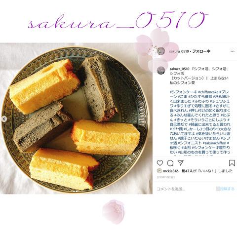 sakura_0510-19
