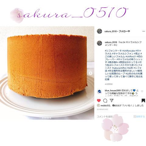 sakura_0510-17