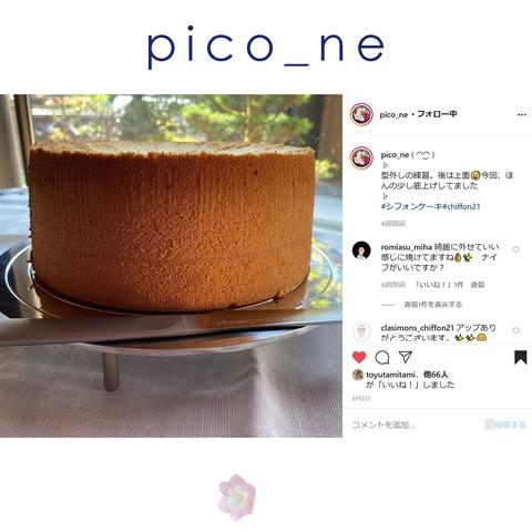 pico_ne-1