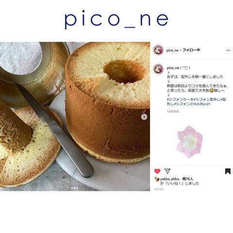 pico_ne-2
