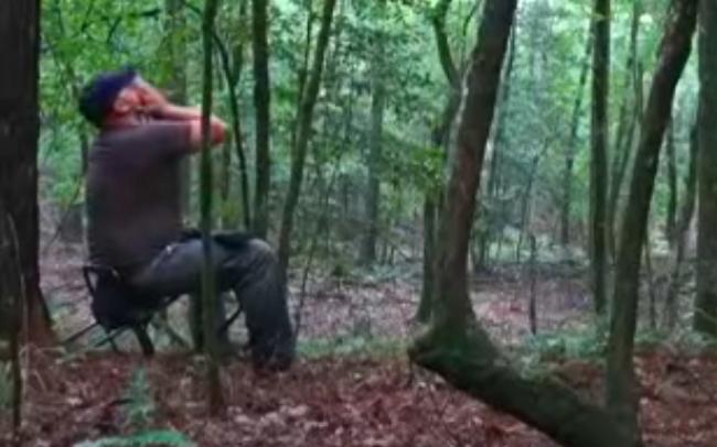 男性が森の中で野生のコヨーテの鳴き真似をしてみた 帰って来た返事がおぞましくて鳥肌が立つ(動画あり) News Clicker-ニュースクリッカー