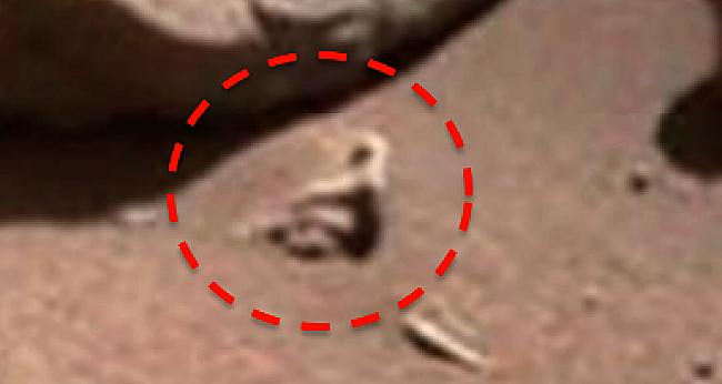 火星にエイリアン!?クモのような4つ足の物体や体育座りする物体、カタツムリらしきものが発見される(画像あり) News Clicker-ニュースクリッカー