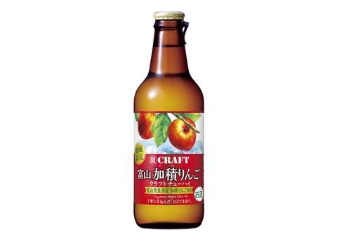 寶クラフト富山加積りんご