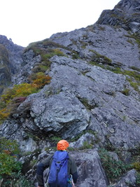DSCF1961南稜を見上げる