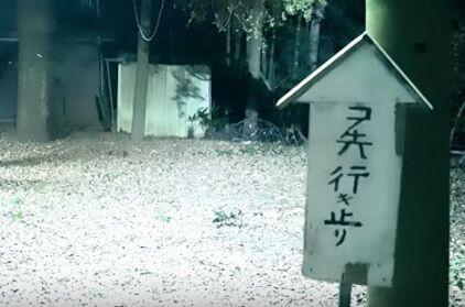 コノ先行キ止リ