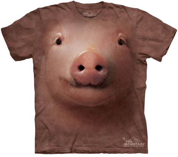 Camiseta-Animal-Bem-Legaus-4