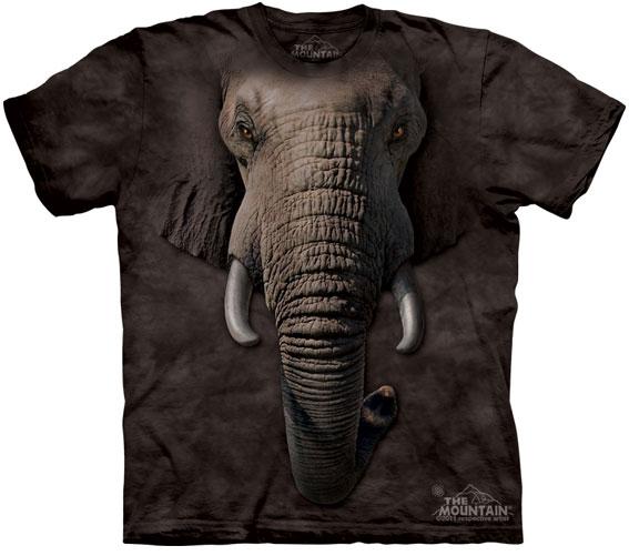 Camiseta-Animal-Bem-Legaus-9