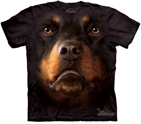 Camiseta-Animal-Bem-Legaus-2