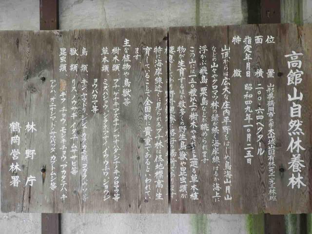DSCN0438