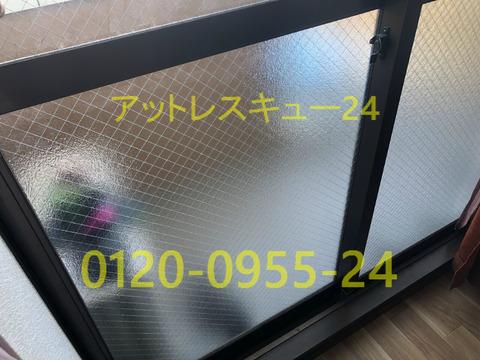 ガラス入れ替え型網菱タイプ