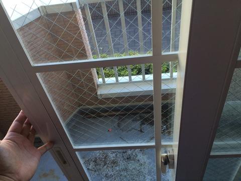 窓ガラス透明網菱 空き巣被害 新品交換
