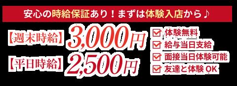 nanohana2_taiken