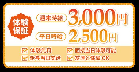 nanohana1_taiken
