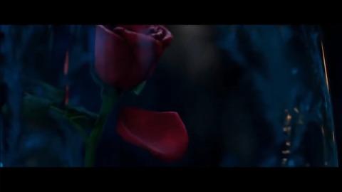 実写映画版「美女と野獣」興行収入・動員予測:ディズニー実写NO.1ヒット確実!?